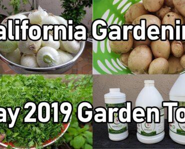 California Gardening Garden Tour
