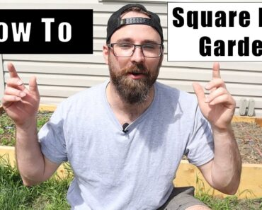 How To Plant Square Foot Gardening: Complete Guide For Beginners