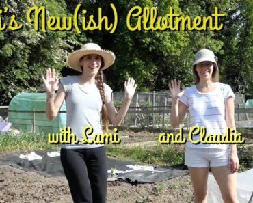 Beginners allotment gardening with Lumi