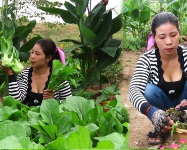 AHVY: Vegetable soup in her garden Healthy food