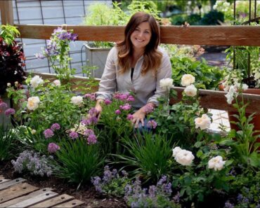 Tips for Planting a Cottage Garden! // Garden Answer