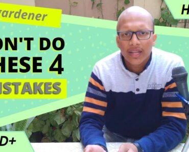 Beginner's mistake in gardening |4 mistakes to avoid| The Green