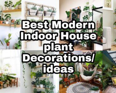 BEST MODERN INDOOR HOUSE PLANTS DECORATIONS /IDEAS