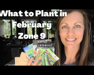What to Plant in February, Zone 9