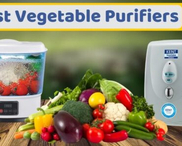 Best Vegetable Purifier in India Complete Buying Guide Top 5