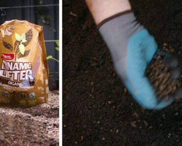 Turn barren soil to bountiful with Yates Dynamic Lifter 30