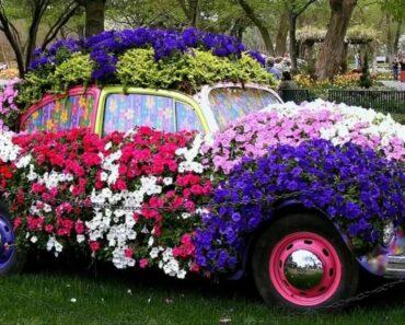 Beautiful small flower garden ideas