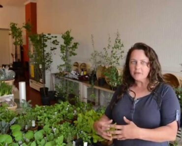 Augusta Outdoors: Healthy Eating, Healthy World