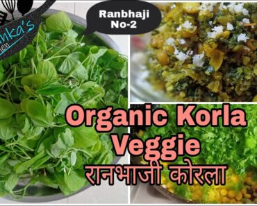 आरोग्यदायी आणि पौष्टिक रानभाजी कोरला# Organic and Natural Korla vegetable#Healthy