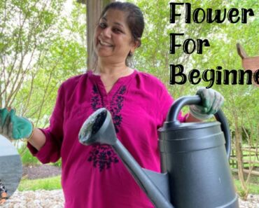 Flower Bed for Beginners | Indian YouTuber in USA