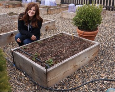 How to Install Drip Irrigation in Raised Beds! // Garden