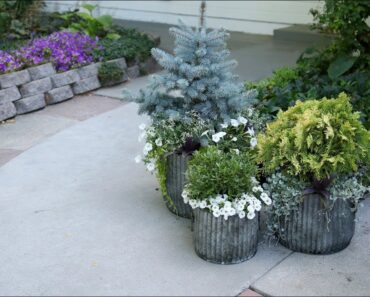 Planting Up Containers that Will Take You Through Winter! ️//