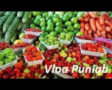 How to Grow Organic Healthy Vegetable
