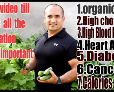 Healthy life style secrets and Nutrition plant