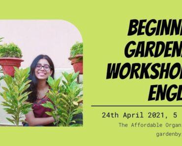 Beginners Gardening Workshop (In English) in Collaboration with gardenby_maabeti