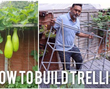 How To Make A Trellis Using A Garden Shelf |