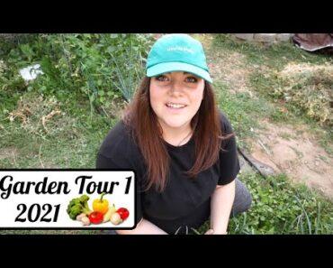 FULL Garden Tour!
