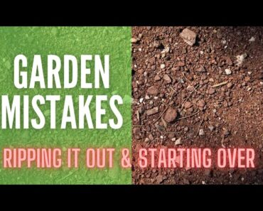 Garden Mistakes || Ripping Out The Garden & Starting Over