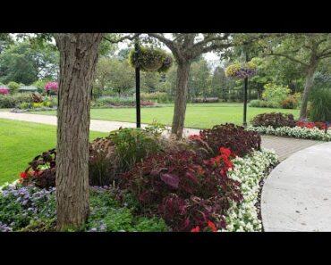 Beautiful Canadian Flower Garden