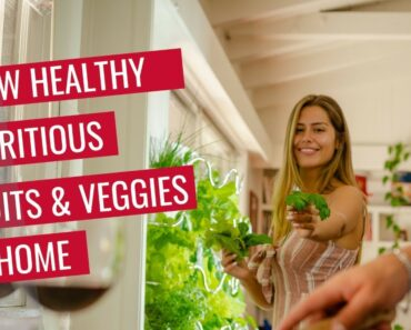 Grow Healthy Nutritious Fruits & Veggies at Home