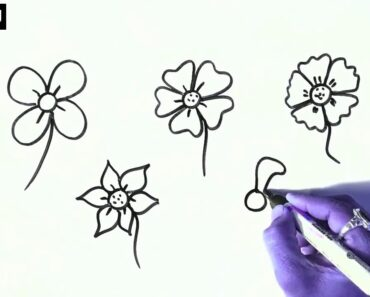 Easy flowers & leves drawing for beginners and kids