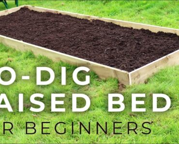 NO-DIG Raised Garden Bed for Beginners