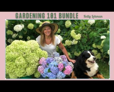 Gardening Course For Beginners